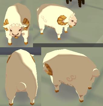 白羊のケース